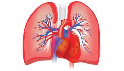 Mengenal Hipertensi Pulmonal